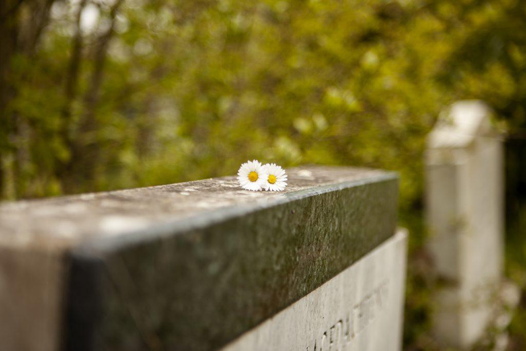 contact-begrafenis-reglelen-Poppe-Minaard-Zeeland-Begraven-Begrafenisondernemer-Begrafenisverzorging-Wilbeschikking-verzorgen
